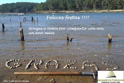 20131211171840-felicitacion-navidad-2013.jpg