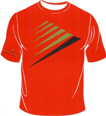 20120823102612-12-camiseta-agrupacon.jpg