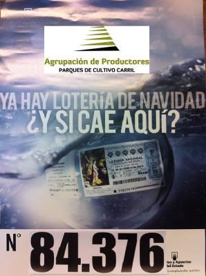 20131015111704-loteria-agrupacion.png